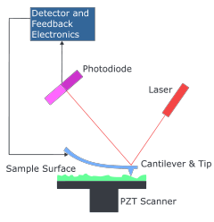 Schematic design of an atomic force microscope