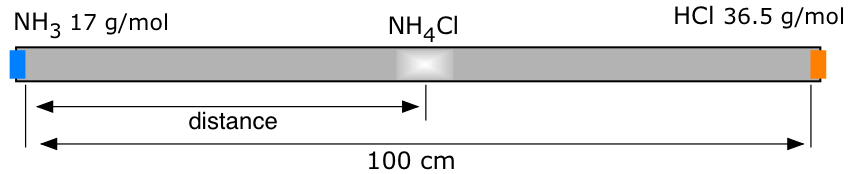 Image of a glass tube with cotton plugs containing NH4Cl