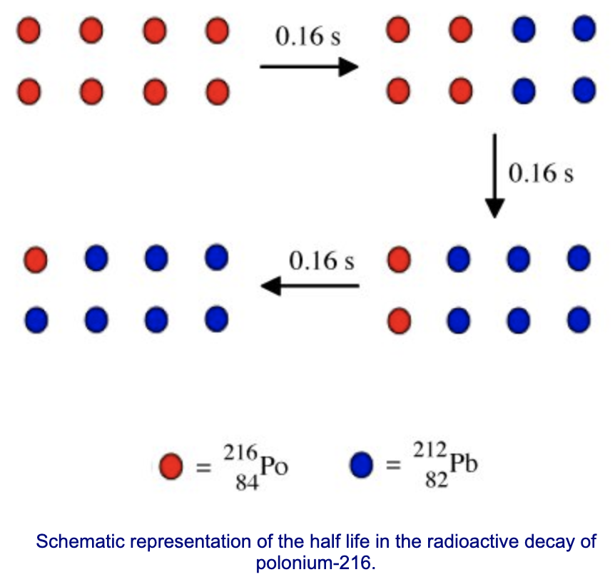 Schematic representation of the half life in the radioactive decay of polonium-216.