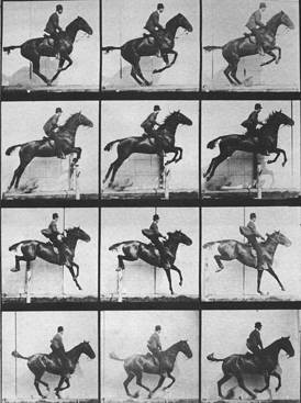 Eadweard Muybridge, 'Sequence of a Horse Jumping', 1904